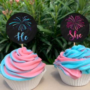 Firework Gender Reveal Cupcake Toppers